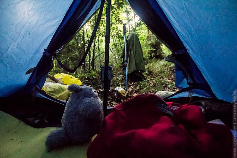 пришли залез к девчонкам в палатку уже знаю что