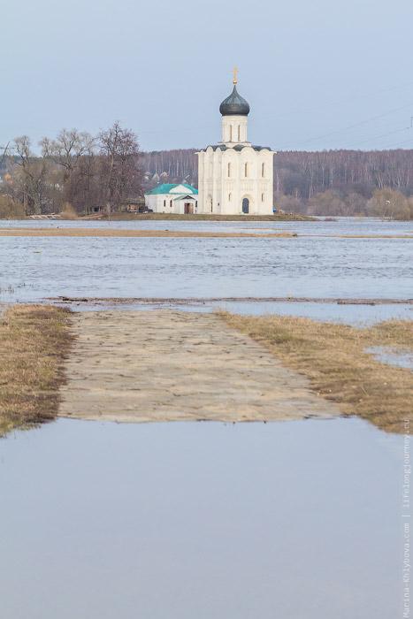 Затопленная дорога к храму Покрова на Нерли