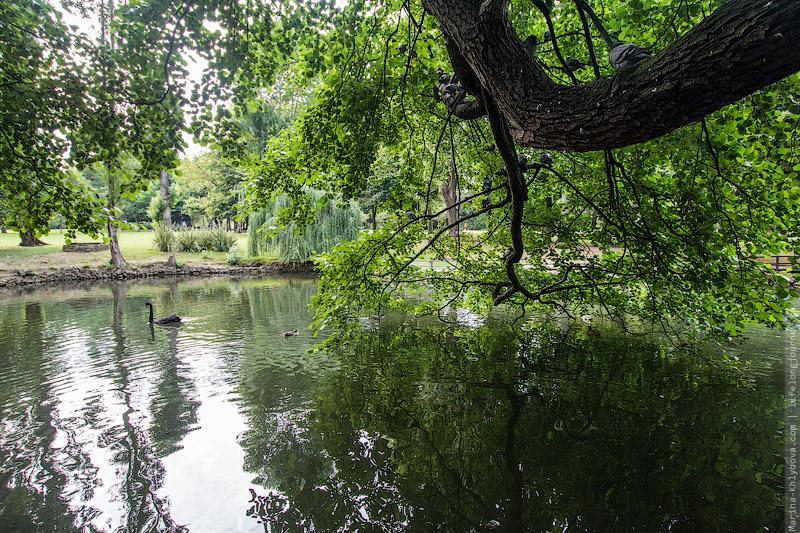 Парк в Авилесе