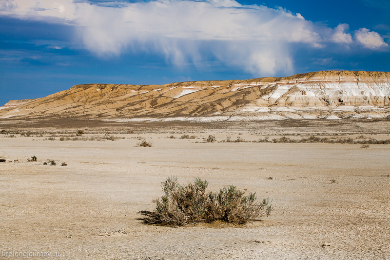 Глиняная пустыня - такыр