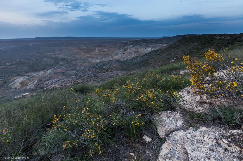 Западный чинк плато Устюрт
