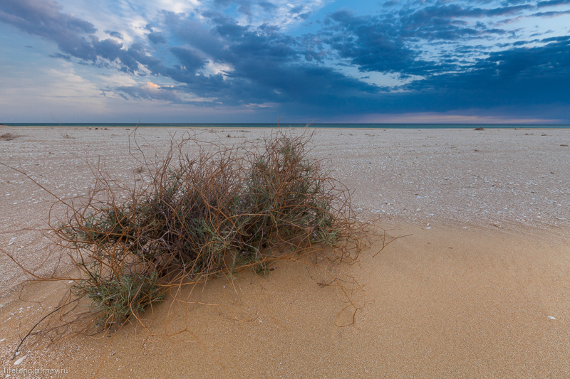 Пляж на Каспийском море