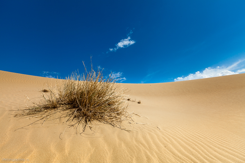Пески Сенека